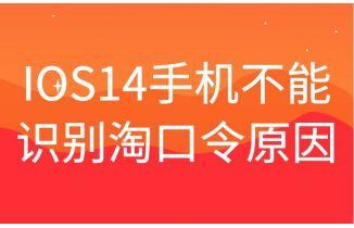 苹果IOS14手机淘宝不能识别淘口令原因可能是这个